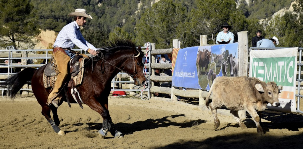 Juan Araquistain Cow Horse Limited Open